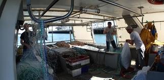 TEFIBIO - lancement des marées tests